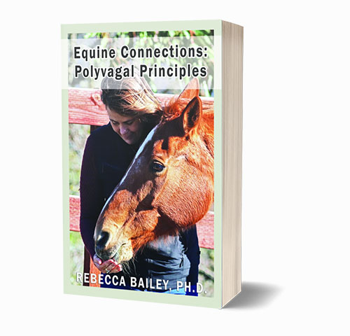 Equine Connections: Polyvagal Principles [Paperback]